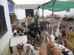 Refuge Nuria à Cordoba (9)