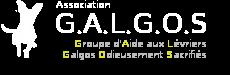 Association Galgos