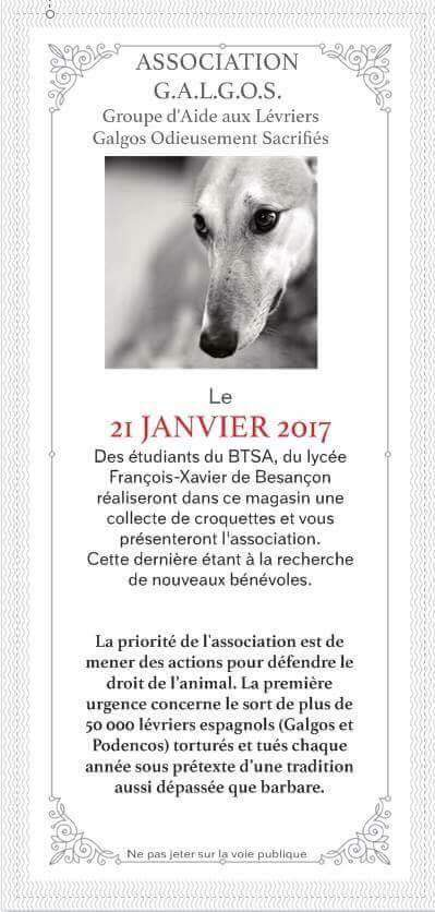 Journ es d information besan on association galgos for Jardiland ecole valentin