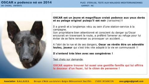oscar02
