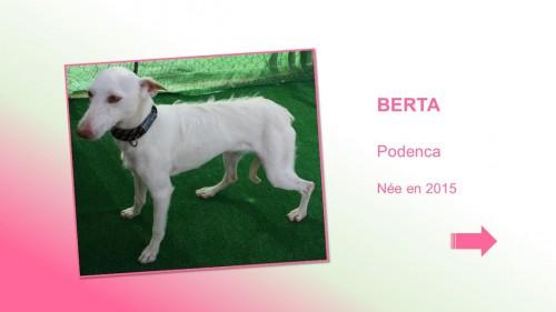 berta01