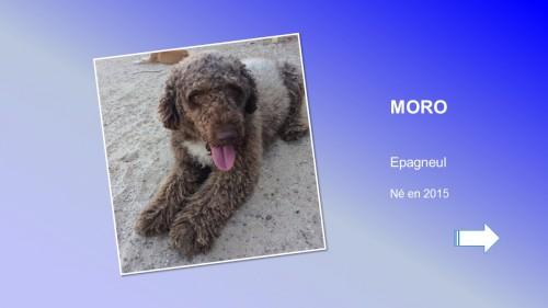 MORO01