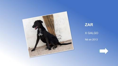 ZAR01